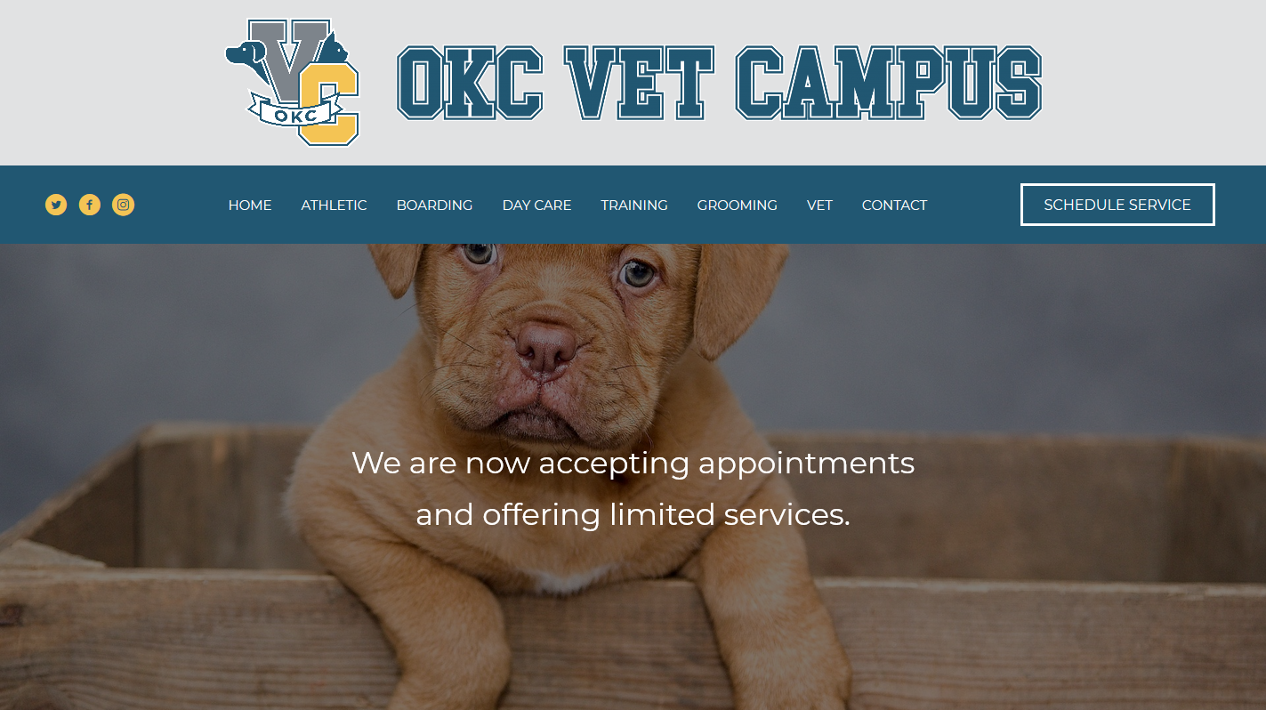 website-design-seo-services-headstormstudios-okc-vet-campus