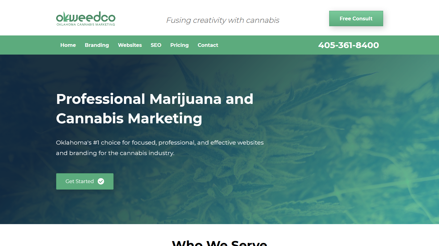 Professional Cannabis and Marijuana Websites and Web Design-headstorm-studios-websites-seo-graphic-branding